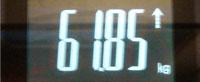 20081019_1