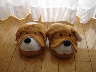 dog200605213